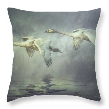 Misty Moon Shadows Throw Pillow