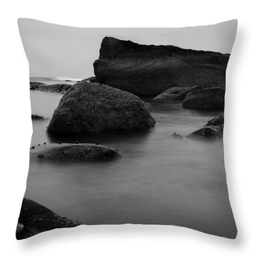 Misty Morning Throw Pillow by Andrew Pacheco