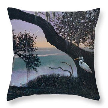 Misty Morning At Seabrook Throw Pillow by Blue Sky