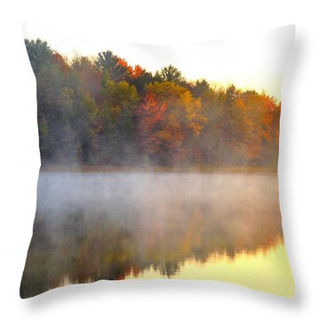 Misty Morning At Stoneledge Lake Throw Pillow by Terri Gostola