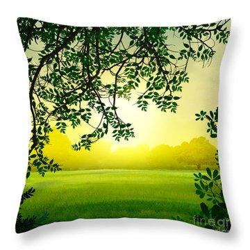 Misty Morning Throw Pillow by Peter Awax