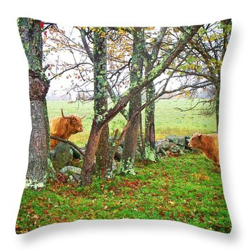 Misty Morning Conversation Throw Pillow by Joy Nichols