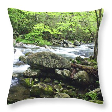 Misty Morning On The River Throw Pillow by Marty Koch