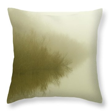 Misty Morning Reflection. Throw Pillow by Clare Bambers