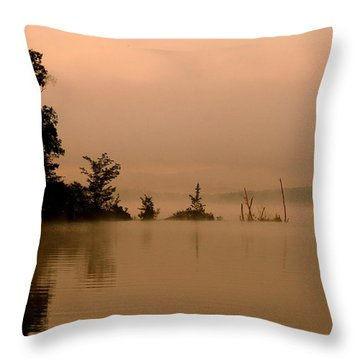 Misty Morning Solitude  Throw Pillow by Neal Eslinger