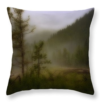 Throw Pillow featuring the photograph Misty Mountain by Ellen Heaverlo