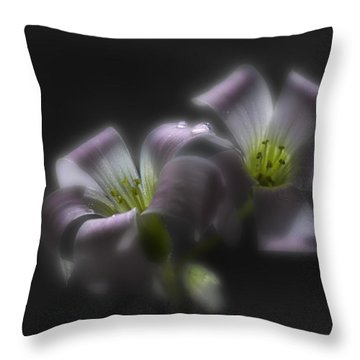 Misty Shamrock 2 Throw Pillow by Susan Capuano