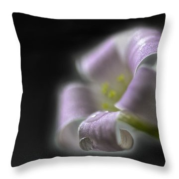 Misty Shamrock 3 Throw Pillow by Susan Capuano