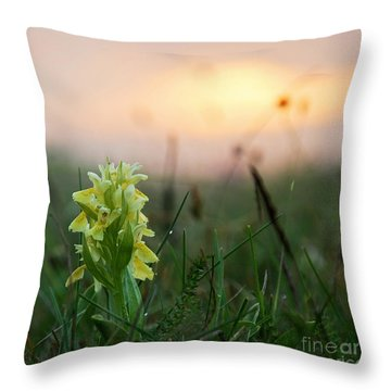 Misty Sunset Orchid Throw Pillow by Kennerth and Birgitta Kullman