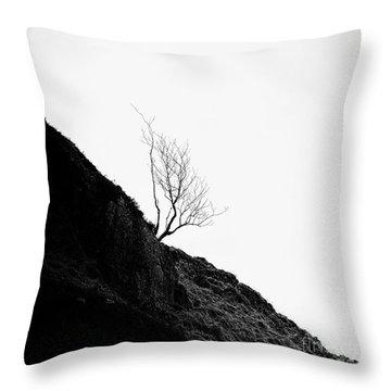 Misty Tree Glen Etive Throw Pillow by John Farnan