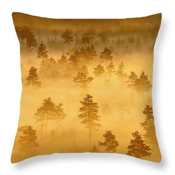 Misty Trees In The Morning Throw Pillow