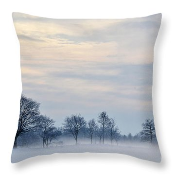 Misty Winter Day Throw Pillow