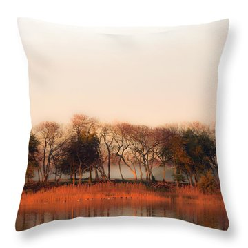 Misty Winter's Morning Throw Pillow