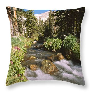 Mitchell Creek Throw Pillow