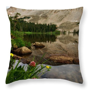 Mitchell Lake Reflections Throw Pillow