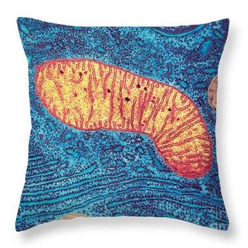 Mitochondrion Throw Pillow