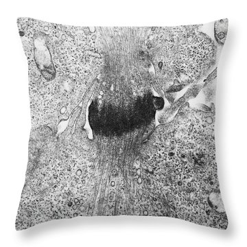 Mitosis, Tem Throw Pillow