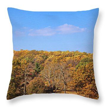 Mixed Fall Throw Pillow