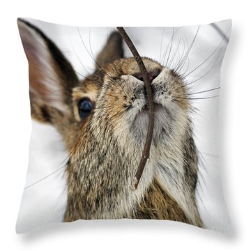 Mmm.. I Like Twiggy... Throw Pillow