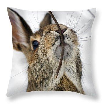 Mmm.. I Like Twiggy... Throw Pillow