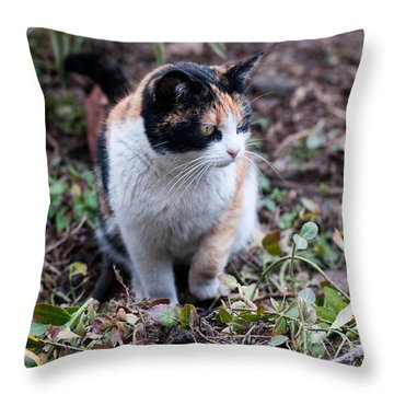 Throw Pillow featuring the photograph Mochi In The Garden by Laura Melis