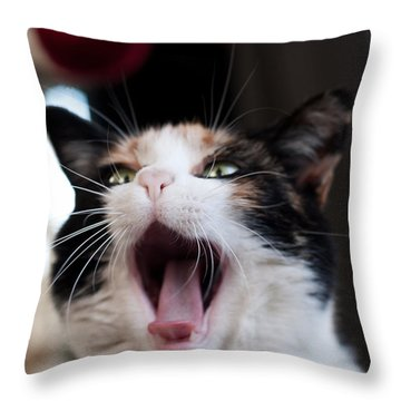 Throw Pillow featuring the photograph Mochi  by Laura Melis