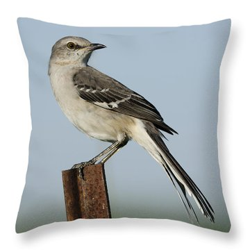 Mocking Bird On A Metal Post Throw Pillow