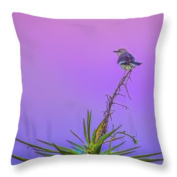 Throw Pillow featuring the photograph Mocking The Yucca by Rob Sellers