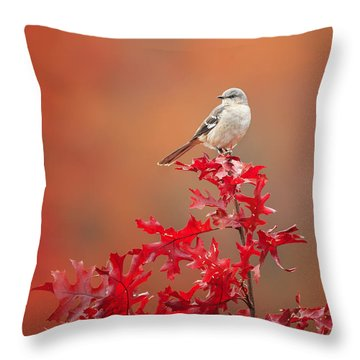 Mockingbird Autumn Throw Pillow