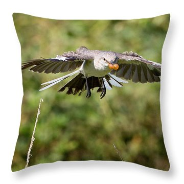 Mockingbird In Flight Throw Pillow