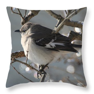 Mockingbird In Winter Throw Pillow