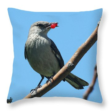 Mockingbird With Berries Throw Pillow