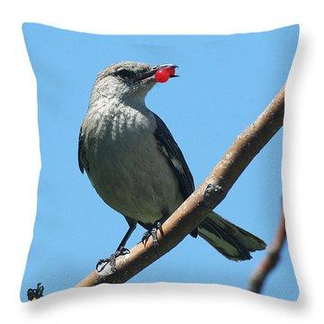 Mockingbird With Berries Throw Pillow