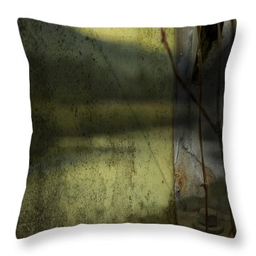 Throw Pillow featuring the photograph Modern Landscape by Belinda Greb
