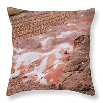 Moenkopi Corn-h Throw Pillow