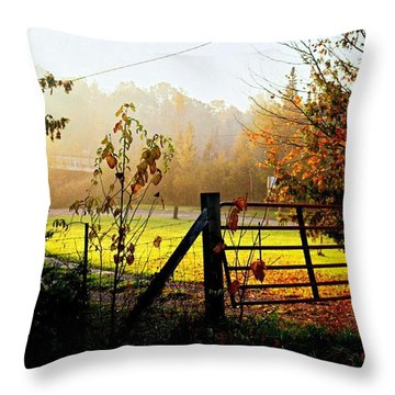 Throw Pillow featuring the photograph Moffit Bridge  by Daniel Thompson