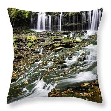 Mohawk Falls 1 Throw Pillow