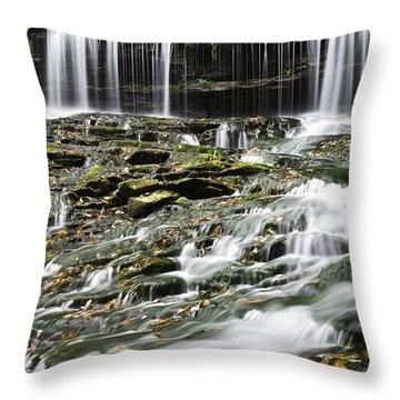 Mohawk Falls 2 Throw Pillow