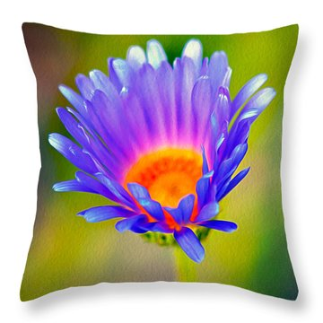 Mojave Aster Throw Pillow