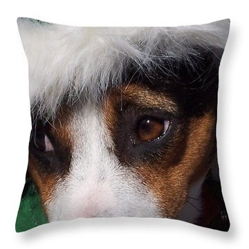 Mojo's New Holiday Coat Throw Pillow by Claudia Goodell