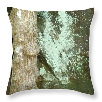 Throw Pillow featuring the photograph Mold On Rock by Pete Trenholm