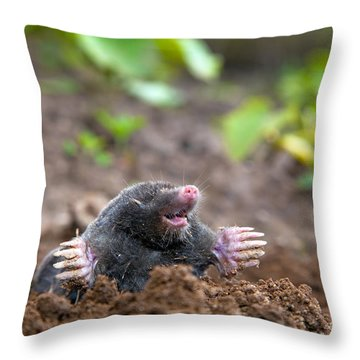 Mole In Ground Throw Pillow by Michal Bednarek