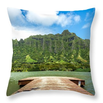 Molii Fishpond 1 Throw Pillow by Leigh Anne Meeks