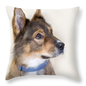 Molly 5 Throw Pillow