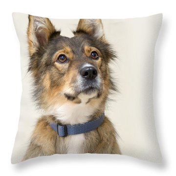 Molly 7 Throw Pillow