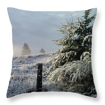 Throw Pillow featuring the photograph Moment Of Peace by Rory Sagner