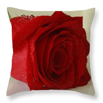 Moments Of Grace Throw Pillow by Inspired Nature Photography Fine Art Photography