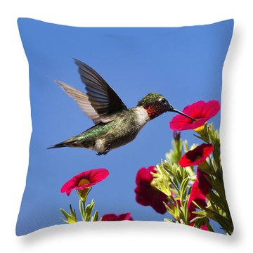 Moments Of Joy Throw Pillow by Christina Rollo