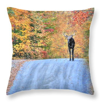 Moments That Take Our Breath Away - No Text Throw Pillow