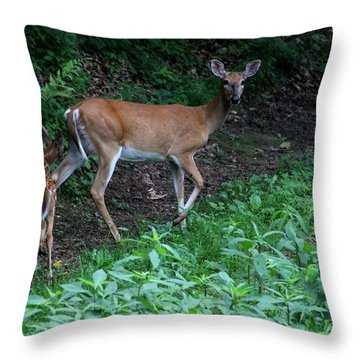 Momma And Babies Throw Pillow